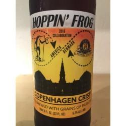 Hoppin' Frog/ Dry & Bitter...