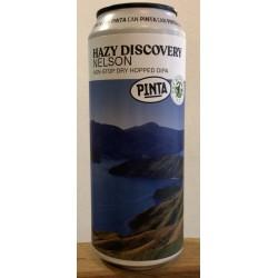 Pinta Hazy Discovery Nelson